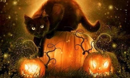 10 dolog, amit tutira nem tudtál Halloween ünnepéről!